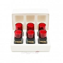 Set de tinteros TWSBI 1791