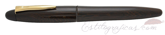 Pluma Estilográfica Platinum Izumo Tagayasan Brillo PIZ-55000 black gloss