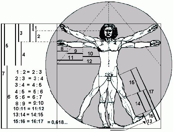 Piezas Hombre del Vitruvio donde Leonardo da Vinci representa el número Phi o áureo